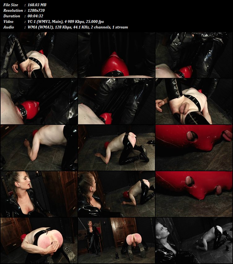 424 Female Domination.wmv.jpg